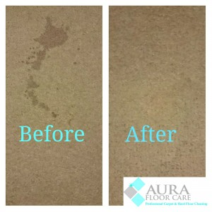 best carpet cleaning services bristol