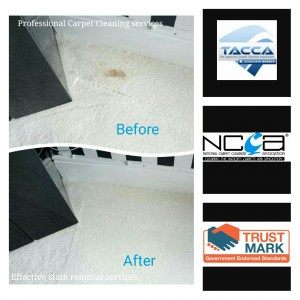Stain removal services Bristol