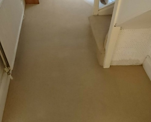 Carpet cleaning bath