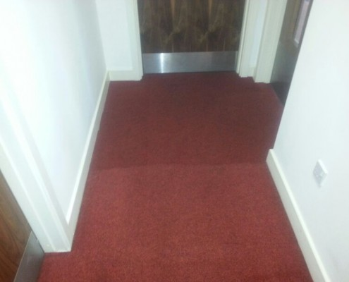 Achieving, quick highest quality carpet cleaning results, in house cleaners can only dream of achieving