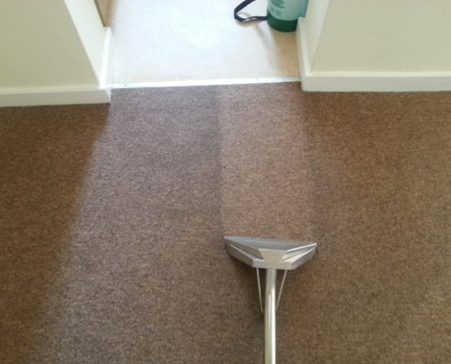 Green carpet cleaning Bath