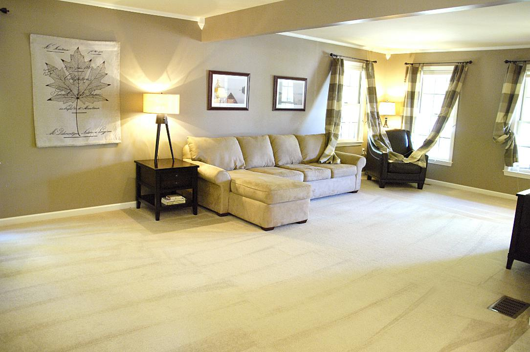 wHOLE HOUSE CARPET CLEANING DISCOUNTS BRISTOL