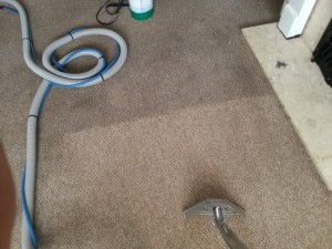 carpet cleaning in Kingswood bristol