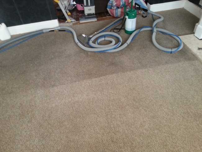 Kingswood carpet cleaning