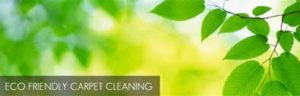 green carpet cleaning Bristol