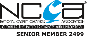 Carpet cleaning in clifton bristol